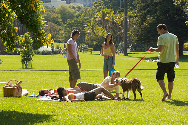 Man with border collie on lead greeting friends in park
